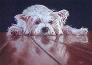 Animal Portraits Pastels Prints - Pooped Pooch Print by Kay Ridge