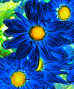 Flower Paintings - Pop Art Daisies 15 by Amy Vangsgard