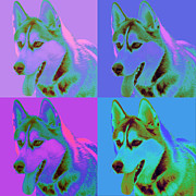 Op Art Digital Art Posters - Pop Art Siberian Husky Poster by Renae Frankz