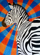 Trippy Paintings - Pop Art Zebra by Amanda Foran