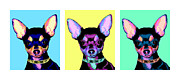 Chihuahua Colorful Art Prints - Pop Chihuahua Print by Laura Sotka