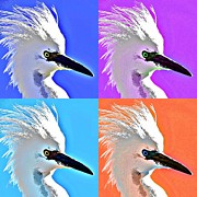 Egret Digital Art Posters - Pop Star Egret Poster by Fraida Gutovich