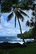 North Shore Prints - Poponi Ulaino Mokupupu Maui North Shore Hawaii Print by Sharon Mau
