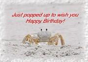 Popped In To Wish You Happy Birthday Print by Judy Hall-Folde
