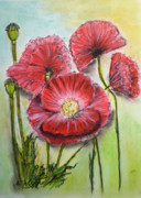 Red Poppies Drawings - Poppies by Agnieszka Jezierska-Drutel