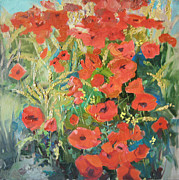 Poppies Field Painting Originals - Poppies by Anastasiia Grygorieva