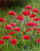 Glenda Cason - Poppies In A Meadow I