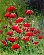 Glenda Cason - Poppies In A Meadow II
