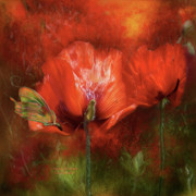 Orange Poppy Art Posters - Poppies Of Summer Poster by Carol Cavalaris