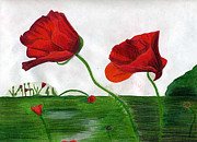Red Poppies Drawings - Poppies by Sarah Wehener