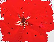 Catherine Jeltes Originals - Poppy 2 Abstract by Catherine Jeltes