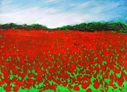 Field. Cloud Drawings - Poppy Field by Jonathan Deitner