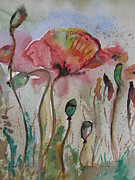 Poppies Field Paintings - Poppy Field by Morena Artina