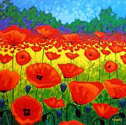 Original Framed Prints Paintings - Poppy Field V by John  Nolan
