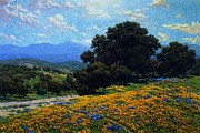 Lupines Paintings - Poppy Field with Oaks and Lupines by Pg Reproductions