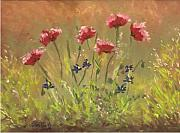 Blooms Pastels - Poppy Patch by Lisa Bell