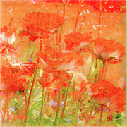 Shabby Chic Flowers Prints - Poppy Praise Print by Linde Townsend