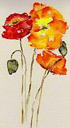 Watercolor  Paintings - Poppy Trio by Anne Duke