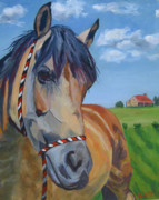 Horse Head Paintings - Poppys Paradise by Anne West