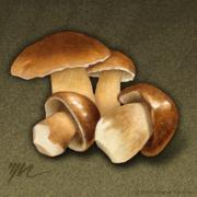 Mushrooms Drawings Posters - Porcini Mushrooms Poster by Marshall Robinson