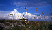 Sea Oats Framed Prints - Port Boca Grande Lighthouse Framed Print by Skip Willits