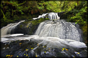 Interpretive Metal Prints - Port Ludlow Waterfall Metal Print by Mike DeCesare