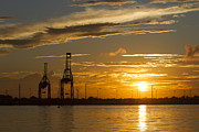 Charleston Sunset Posters - Port of Charleston Sunset III Poster by Dustin K Ryan