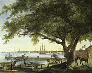 Philadelphia Street Framed Prints - Port Of Philadelphia, 1800 Framed Print by Granger