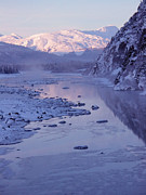 Portage Prints - Portage Creek in Winter - Alaska  Print by Gary Whitton