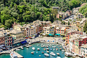 Genoa Framed Prints - Portofino Harbor Framed Print by Alfredo J G A Borba
