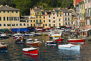 Portofino Italy Photo Posters - Portofino in the Italian Riviera in Liguria Italy Poster by David Smith