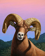 Animal Painting Posters - Portrait of a Bighorn Poster by James W Johnson