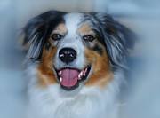 Aussie Digital Art - Portrait of a Dog Lady by Jutta Maria Pusl