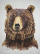 Grizzly Pastels Prints - Portrait of a Grizzly Bear Print by Jackie  Hill