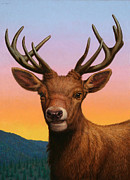 Horns Painting Framed Prints - Portrait of a Red Deer Framed Print by James W Johnson