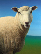 Domestic Animals Posters - Portrait of a Sheep Poster by James W Johnson