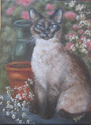 Siamese Cat Print Framed Prints - Portrait of a Siamese Cat Framed Print by Gayle Rene
