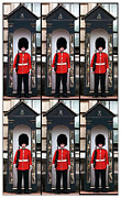 Buckingham Palace Photos - Portrait of a Sleepy Guard by John Rizzuto