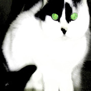 Mystery Digital Art - Portrait Of A White Cat by Ben and Raisa Gertsberg