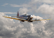 Classic Aircraft Prints - Portrait of an Icon Print by Pat Speirs
