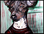 Hairless Paintings - Portrait of Axel 3 by L Pope