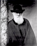 White Photo Posters - Portrait of Charles Darwin Poster by Julia Margaret Cameron
