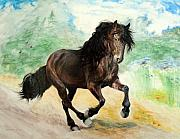 Horse Drawings Framed Prints - Portrait of Phantom Canadian Horse Framed Print by Jill Iversen