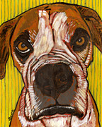Boxer Portrait Paintings - Portrait of Sweetness Moe by David  Hearn