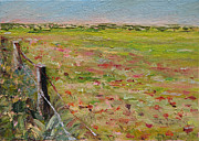 Portugal Art Paintings - Portuguese Field of Flowers by Cindy Roesinger