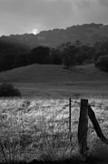 Farmland Art - Post and Light - Black and White by Peter Tellone