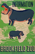 Hippopotamus Posters - Poster For The Brookfield Zoo, Showing Poster by Everett
