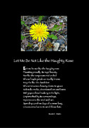 Poster Poem - Let Me Be Not Like The Haughty Rose Print by Poetic Expressions