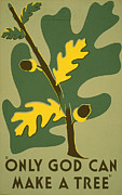 Acorn Prints - Poster Promoting Trees As A Natural Print by Everett