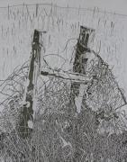 Old Fence Posts Drawings Prints - Posts and S Barb Wire Print by Karen Merry
